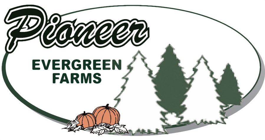 Fall Festival Coloring Pages - Pioneer Evergreen Farms